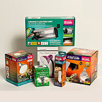 Tortoise Lighting