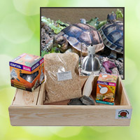 Tortoise Packages