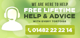 Free lifetime help advice