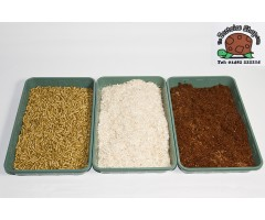 Bedding & Substrates