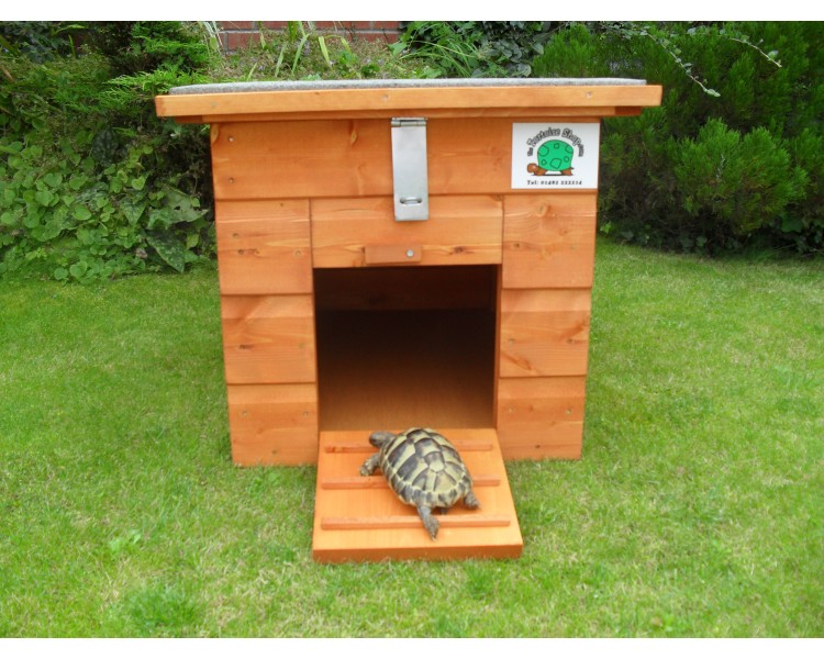 Tortoise House Www Pixshark Com Images Galleries With