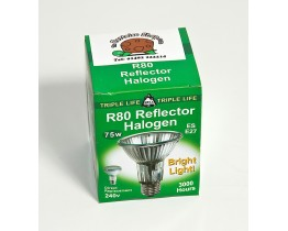 Basking Halogen Bulb 75 Watt R80
