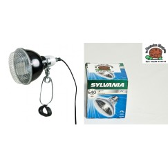 Basking Halogen Bulb R95 & Trixie 14cm Clamp Lamp