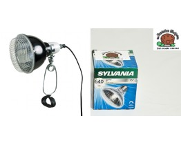 Basking Halogen Bulb R95 & Trixie 14cm Clamp Lamp DISCONTINUED
