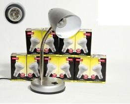 The Tortoise Shop 40watt Basking lamp & Bulb pack