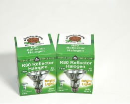 Twin Pack of Basking Halogen Bulbs 75 Watt R80