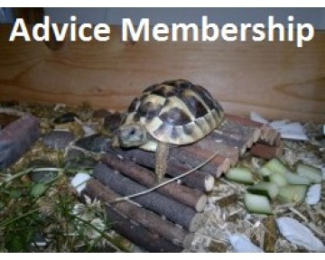 Advice Membership